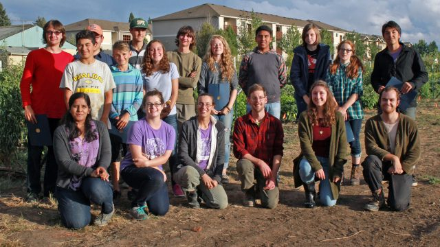 A Muddy Field Has Turned into a Thriving Youth Farm