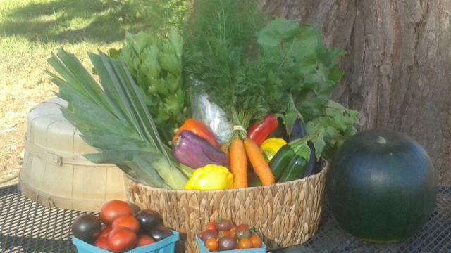 Farm Share Rx Gives Prescription for a Healthy Diet