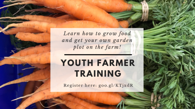 Youth Farmer Training Course